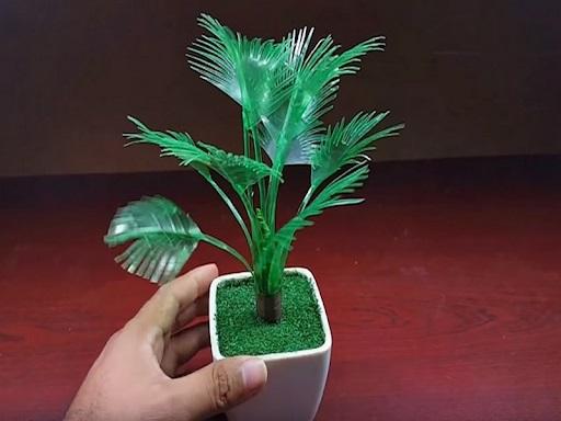 Cách làm cây xanh từ vật liệu phế thải